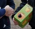 Obstbaumschnitt mit Herrn Rausch_22