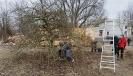 Obstbaumschnitt mit Herrn Rausch_27