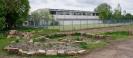 Gartenarbeiten auf dem Schulgelände_25