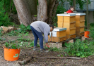 Gartenarbeiten auf dem Schulgelände_26