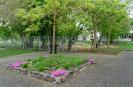 Gartenarbeiten auf dem Schulgelände_29