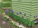 Gartenarbeiten auf dem Schulgelände_2