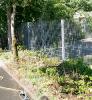 Wässern Pflegen und Gestalten im Schulgarten_1